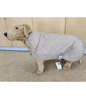 Display Dog In an XL Fawn Jacket